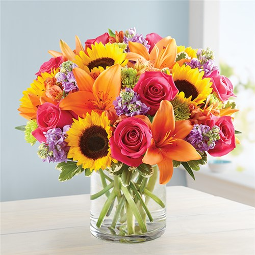 El Paso Tx Same Day Flower Delivery Send A Gift Today
